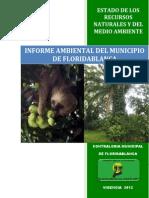 Informe Final Ambiental Anual Sobre El Estado de Los Recursos Naturales Vigencia 2012