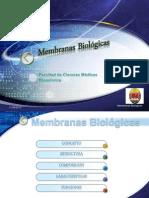 #6 membranas biológicas