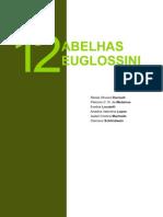 Abelhas euglossini