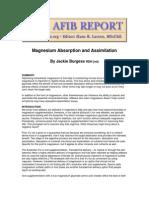 Magnesium Absorption