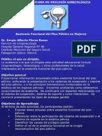 Expo de Piso Pelvico