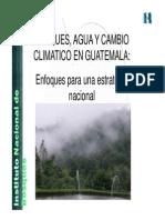 Bosques Agua y Cambio Climtico en Guatemala -InAB- 2008
