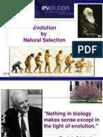 darwin to post