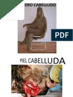Piel Cabelluda
