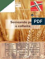 BOLETIM+DOMINICAL+-+02-06-2013+%28web%29
