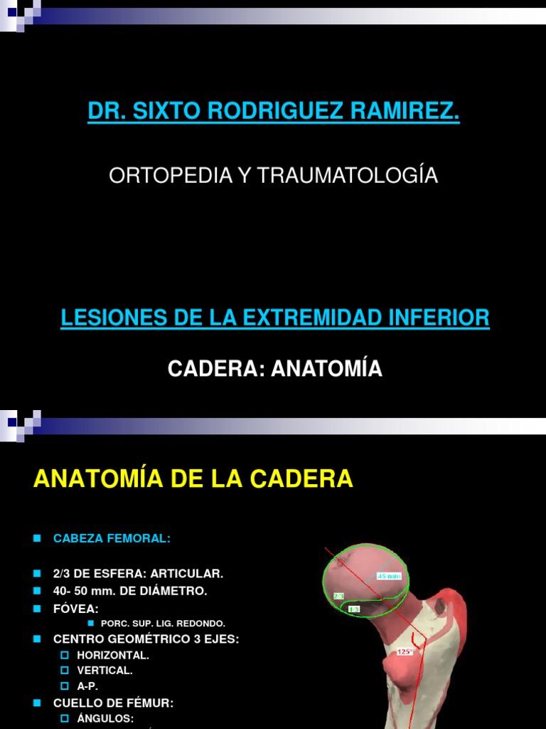ANATOMIA DE CADERA Y FX GENERALIDADES DE FRACTURAS CADERA.pdf