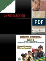 La Recolección 2