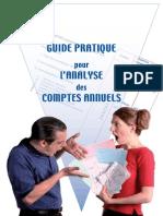 Guide Pratique Analyse Comptes Annuels