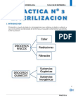 PRACTICA 3 MICROBIOLOGIA.docx