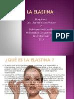 La Elastina