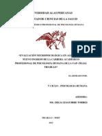 Evaluacion Alas Peruanas-Vcilco