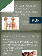 EXAMEN NEUROLOGICO