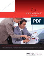BusinessAnalytics_PastelBrochure
