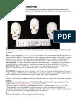 Diccionario Del Antipoeta
