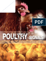 Poultry_Signals_家禽的信号