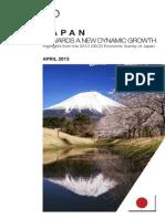 2013.04 Japan Brochure En
