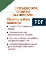 4 AULA INTOXICAÇÃO POR CHUMBO2013.1portal
