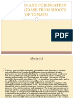 Isolation and Purification of Peroxidase From Shoots of OF TOMATO
