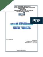 Sistema de Produccion Vegetal