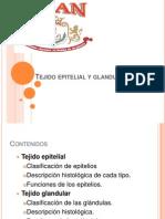 Clase 2, Tejido Epitelial y Glandular