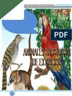 Sos Animales en Paligro de Extincion