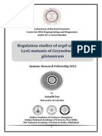 Regulation studies of argO of E.coli by LysG mutants of Corynebacterium glutamicum