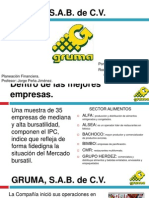 Analisi Financiero de Gruma