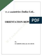 Orientation Report