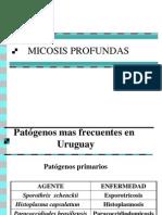 Micosis Profundas
