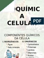 AulaBioquimica