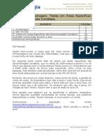 Auditoria AFRFB 2013 - Aula 04