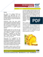 Boletín Piña- 01_06-13