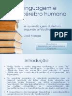 Linguagem e cérebro humano - x