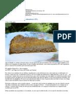 [Hermana-bernarda] Tarta Cremosa de Manzanas y Almendras ( GF )