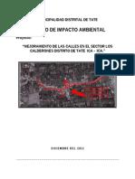 13. Estudio de Impacto Ambiental Calderones