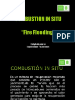COMBUSTION IN SITU.ppt