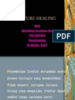 Fracture Healing Power Point