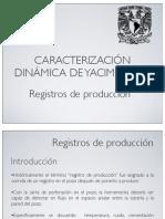 Registros_de_produccion.pdf