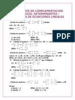 EJERCICIOS_DE_COMPLEMENTACIÓN.Matrices._Determinantes._Sistemas