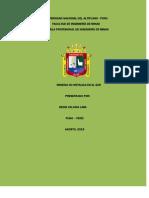 Informe de Denis Calcina Lima