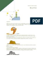 Micul Print Carte
