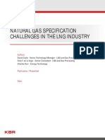 Natural Gas Specification and challenges
