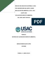 Matrices de Valoracion de Impacto Ambiental