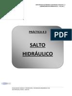 PRACTICA3_SALTO HIDRAULICO.pdf