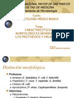 1.1 Características generales de Protozoos y Helmintos