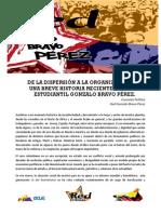 Red Gonzalo Bravo Pérez
