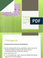 Trypanosoma Gabiense