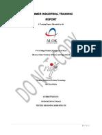 Alok Final Internship Report