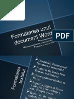Formatarea Unui Document Word