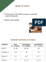 Program a Deal i Me Ntac i on Desde Des Tete